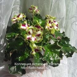 Лесной Царь (Кузина/Артёмова)