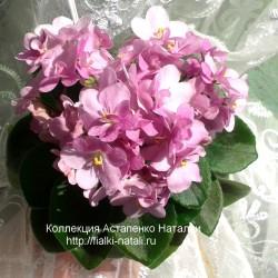 СК-Яблоневый сад (А.Кузнецов)