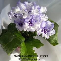 Dem-Крижалик (Демченко)